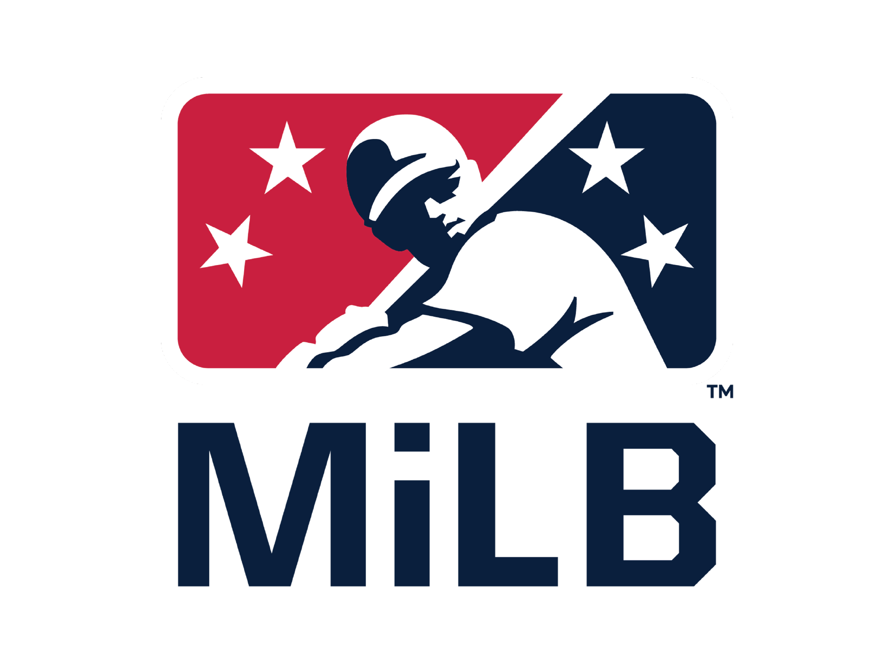 Congressional Baseball All Star Sponsor>